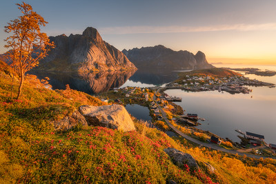 Autumn in the Lofoten