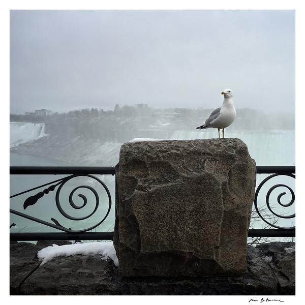 Niagara Falls, April 2016, Original Fine Art Documentary Photograph by Michel Botman © north49exposure.com