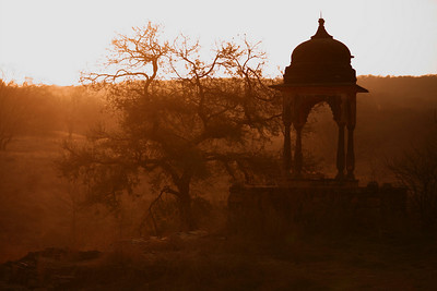 Sun rising over ruins, Ranthambore National Park