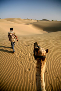 Navigating the sea of dunes on a camel trek, Sam Sand