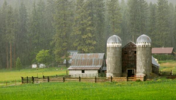 Rain in the Chumstick Valley, Washington