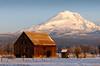Morning Light - Mt Adams