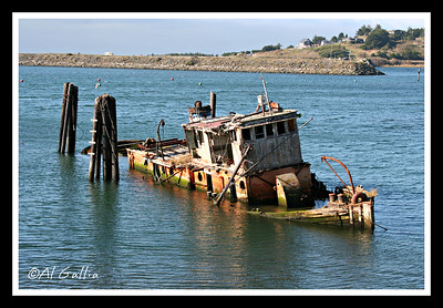 The 'Mary D. Hume' laying at rest on the Rogue River near Gold Beach, Oregon. Built in 1881 at Gold Beach, she has been in her final resting place since 1978. She had a varied and exciting career in Artic whaing, towing, and halibut fishing.