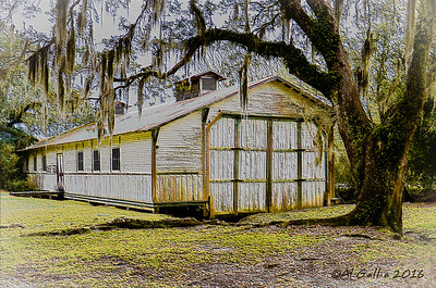 'Opulence Once Lived Here'; Old boat house at Avery Island Jungle Garden, built by Charles Ward c. 1910 to house a 72' luxury yacht for his hunting/fishing camp.  Over 100 years old! ©Al Gallia