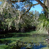 Blue Spring State Park - Orange City, FL - A peaceful place