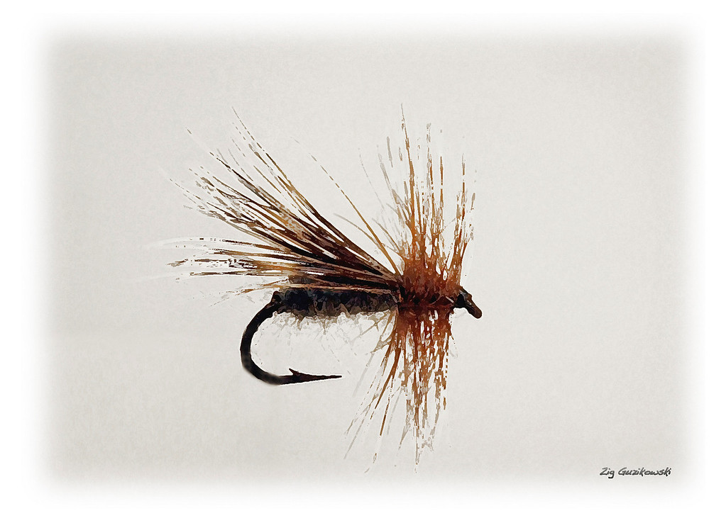 618 hair wing caddis proof