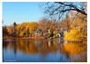117 November Colors on Shame Lake