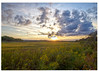 138 sunset over the great Salt Marsh-proof