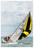 215 Figawi Race 2014