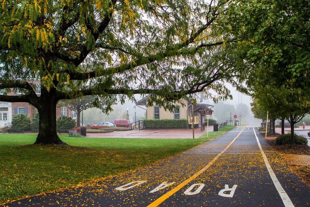 Herndon in the Fog || Herndon, VA