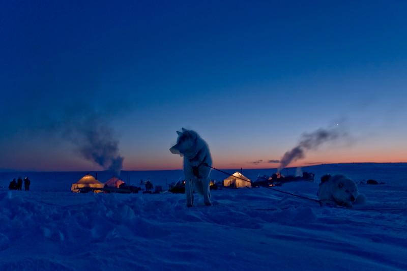 Ivakkak course de traîneau à chien edition 2010 <br /> <br /> Kangirsuk vers Aupaluk