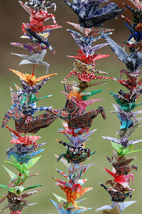 Details of 1000 crane project. A little over 1000 cranes were folded and strung up as a birthday present for the photographer's sister. Legend says that 1000 cranes = one free wish.