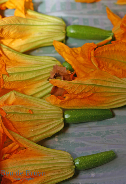 Pattern and shapes: Zucchini Flower display