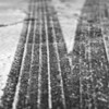 Snow Tracks #1 - Austin, Texas