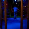 Lone Performer, Bat Bar - Austin, Texas