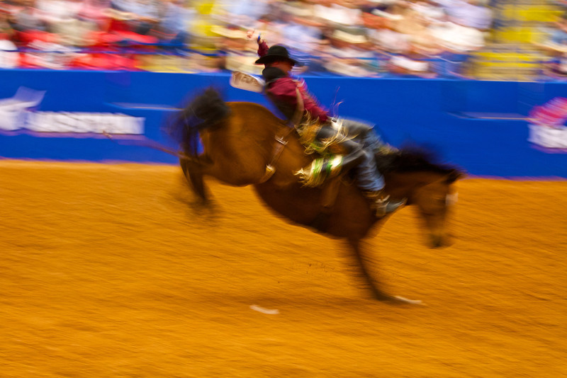 Bucking and Blur #2, Rodeo Austin - Austin, Texas