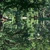 Reflecting Creek - Austin, Texas