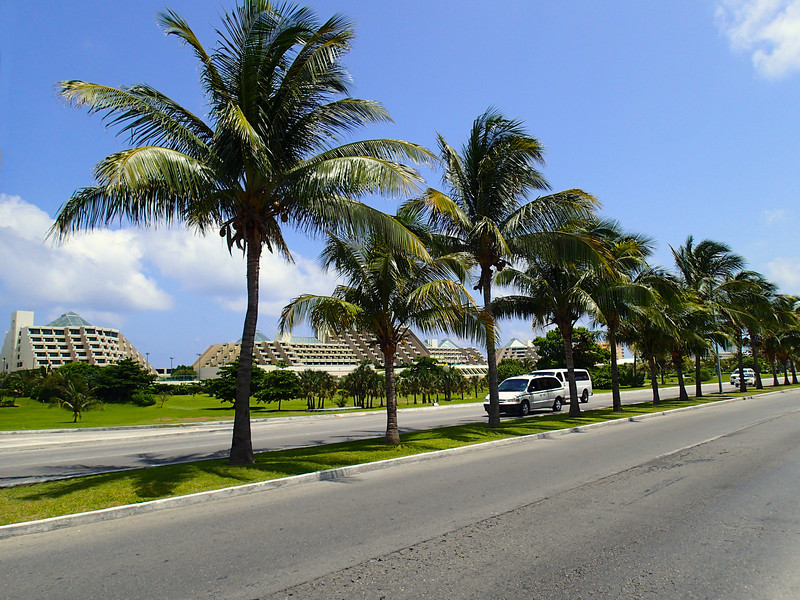 The Palms of Boulevard Kukulcan - Cancun, Mexico