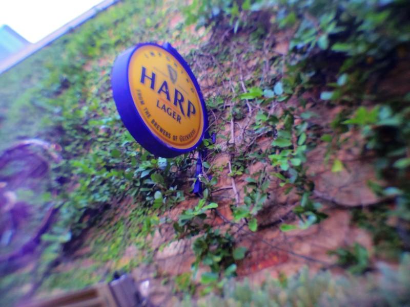 Harp Sign, Lofi - Austin, Texas