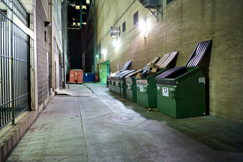 Shiny Trash Bins, Alleyway off 6th - Austin, Texas