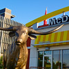 A Longhorn at McDonald's - Austin, Texas
