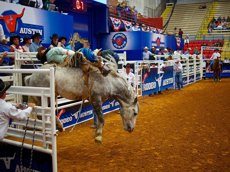 Bucking Bronco 5, Rodeo Austin - Austin, Texas