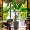Soluna Restaurant - San Antonio, Texas