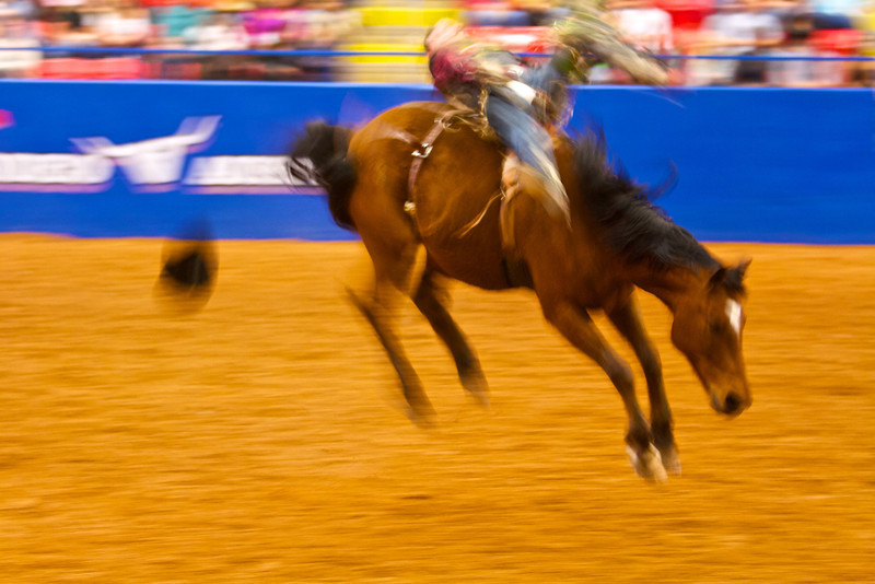 Bucking and Blur #3, Rodeo Austin - Austin, Texas