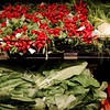Bountiful Supermarket Harvest - Austin, Texas