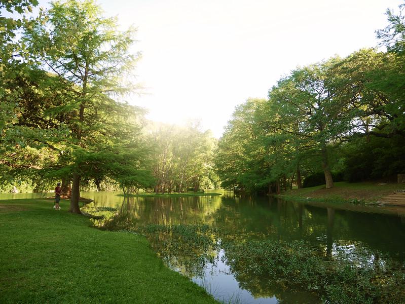 Sunshine and Park - Austin, Texas