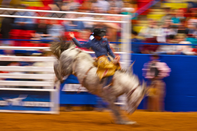 Bucking and Blur #1, Rodeo Austin - Austin, Texas