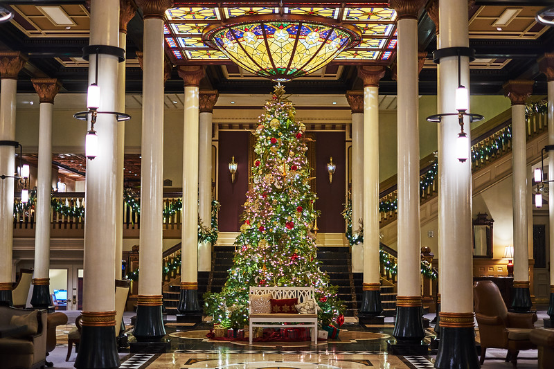Driskill Christmas Tree 2019 - Austin, Texas (Fujifilm X-T10)
