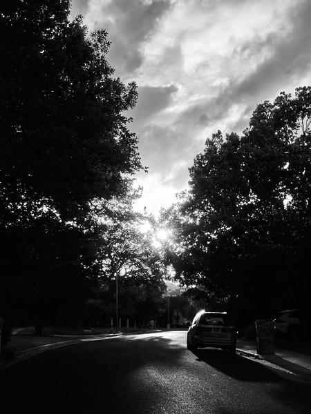 Minivan and Suburb - Austin, Texas