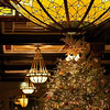 2011 Driskill Christmas Tree and Glass Dome - Austin, Texas
