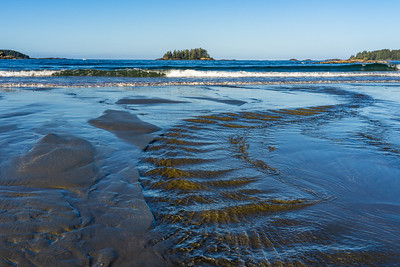 Tide Trail