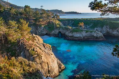Big Sur, Seacapes & Marine life