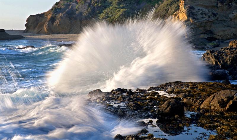 Pounding Shores