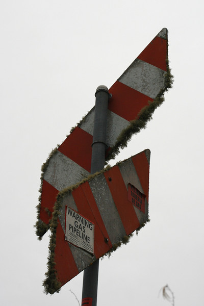 Mossy signpost in Willits