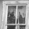 6-8-14: Old curtains, Dry RIver Road