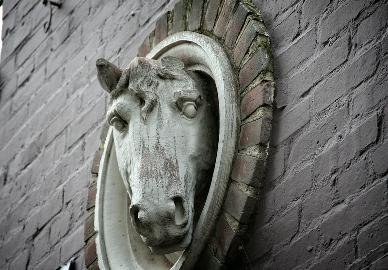 7-21-14: Horse on the wall, Georgetown