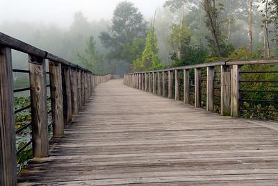 Beaver Marsh Boardwalk - Cuyahoga Valley National Park