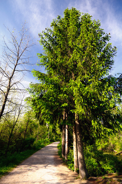 Towpath near Lock 26 on the Ohio and Erie Canal - Cuyahoga Valley National Park