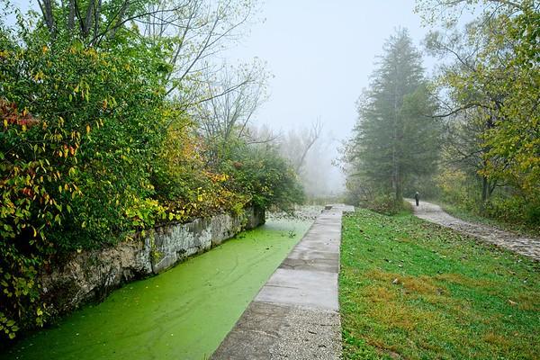 Beaver Marsh 2021