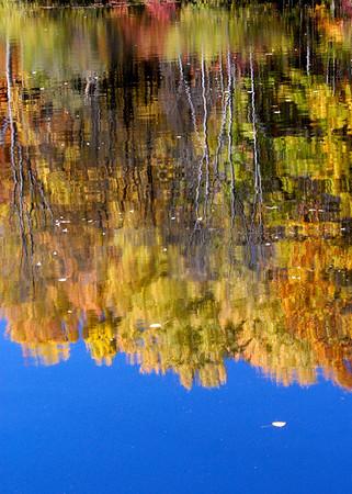 Sylvan Pond