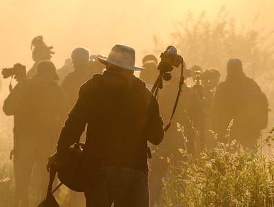 Photographers Head into Battle at the Beaver Marsh - Cuyahoga Valley National Park