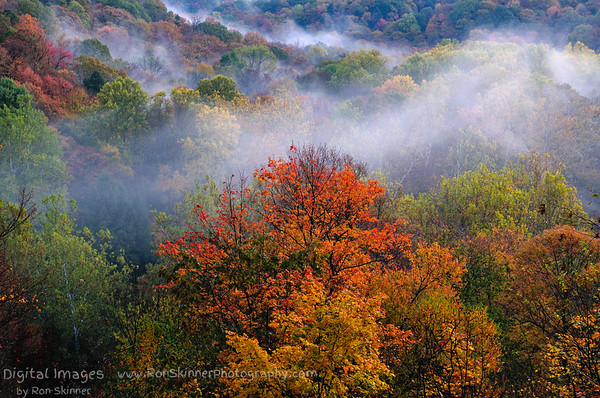 Fall Colors at the Tinker's Creek Overlook