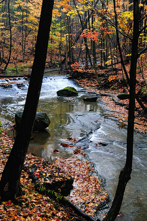CVPS Photo Walk - Bridal Veil Falls - Tinker's Creek Overlook