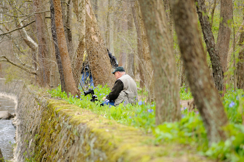 CVPS Photo Walk - Hemlock Trail