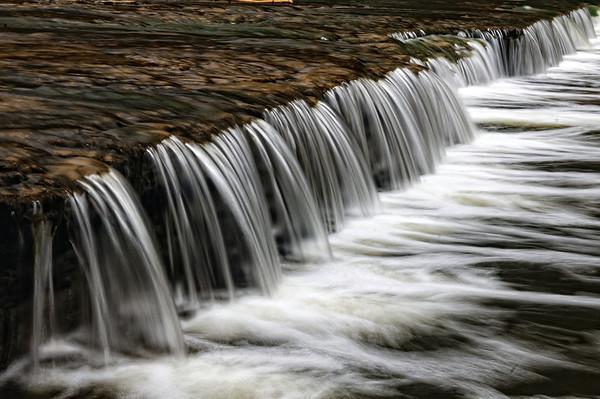 Tinker's Creek - CVPS Photo Walk - Hemlock Trail