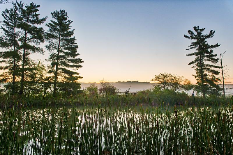 Seven Ponds Overlook